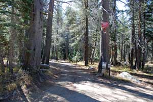 Deer Valley OHV Route, Carson Pass, CA
